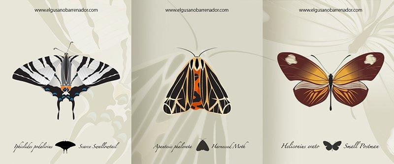 illustration de trois papillons