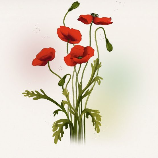 scientific illustration flower