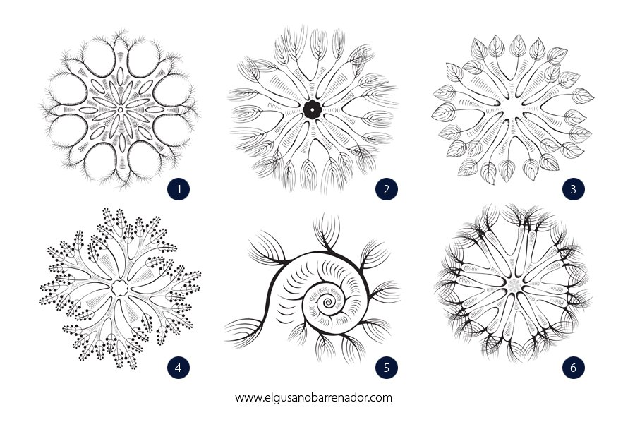 Organismes microscopiques dans 2D dessin micro2
