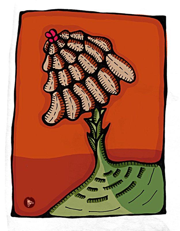 Nature Sauvage. Esquisse pour Web Herbarium dans 2D dessin sombrilla2