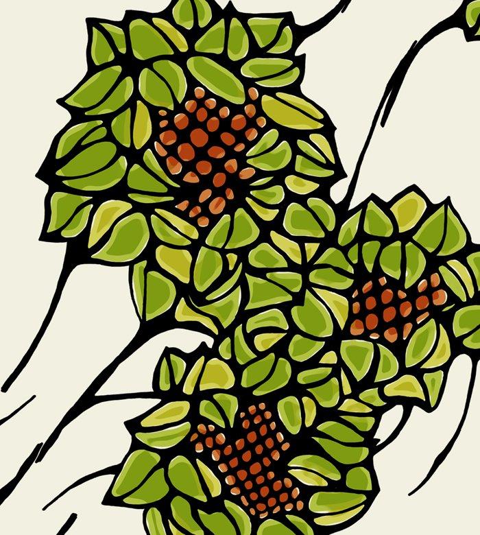 florsgrans2 illustration textile dans infographie