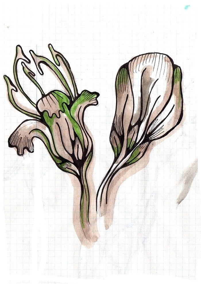 Esquisse pour le design textile avec des motifs de feuilles dans 2D dessin pineflower